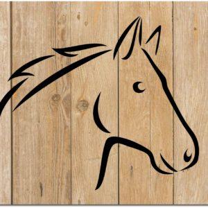 Schwabenbarf Pferd Pur