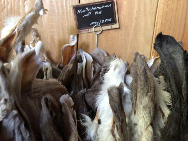 Schwabenbarf Kaninchenohren mit Fell