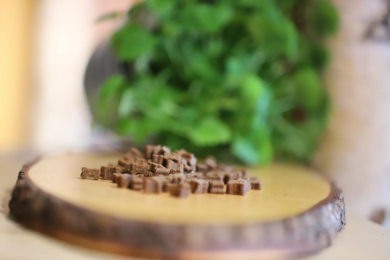 Schwabenbarf Lachs Softies (200 gr)